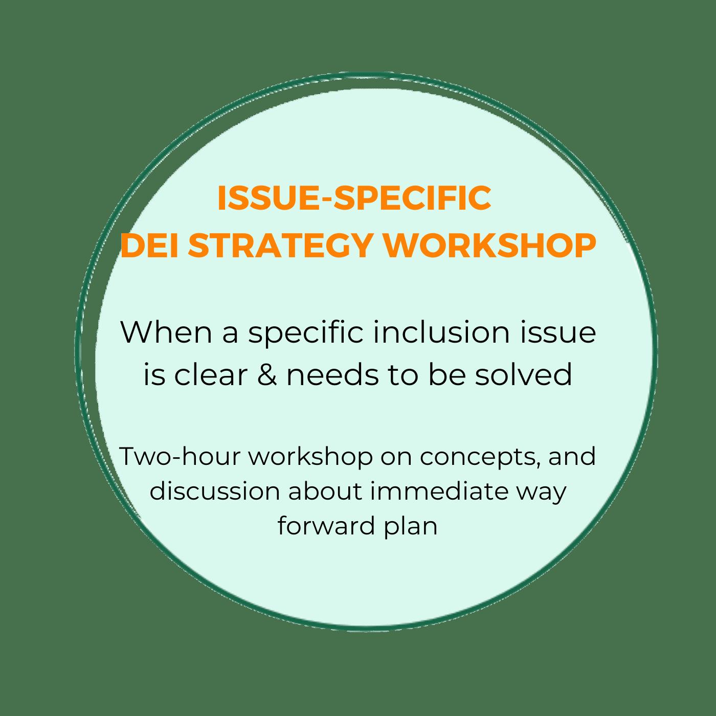 DEI strategy workshop